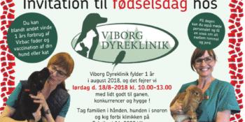 Fødselsdagsfest hos Viborg Dyreklinik
