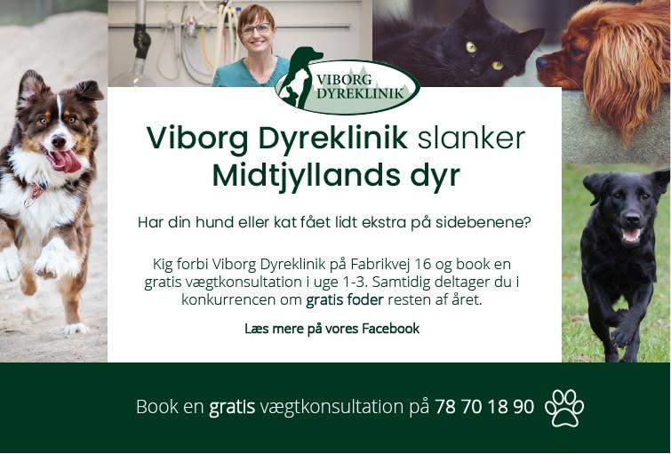 Viborg Dyreklinik slanker